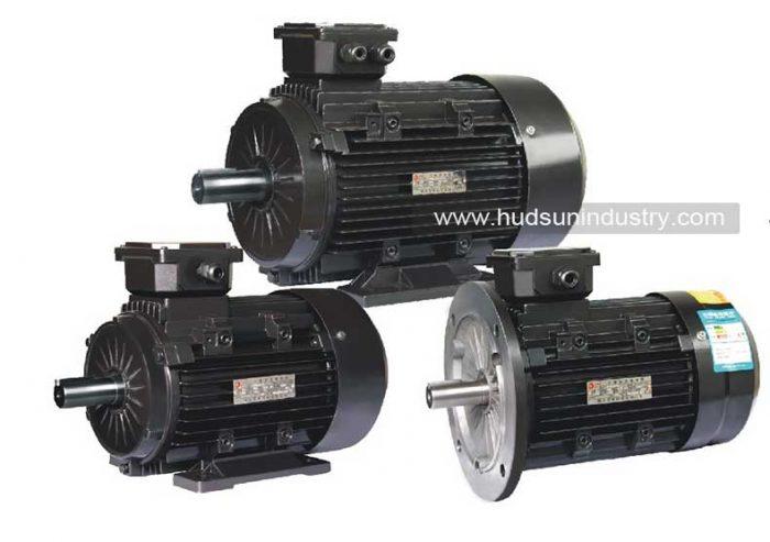 الثلاثي مراحل غير المتزامن-ELECTIRC موتور
